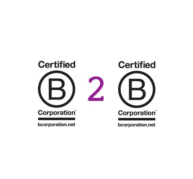 The B Series: The Growth of B2B (B Corp to B Corp)